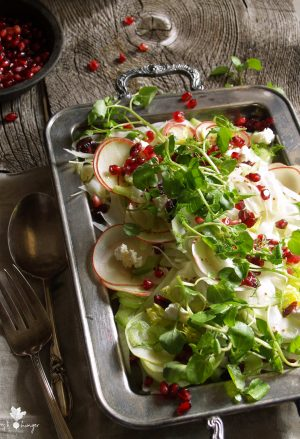 apple, fennel & pomegranate salad